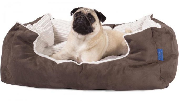 Best Waterproof dog beds for dogs